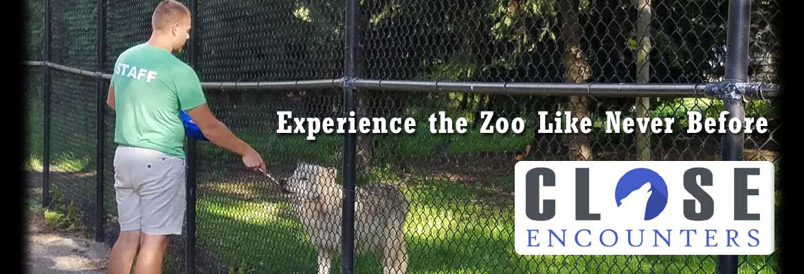 Close Encounters at the Oshkosh Zoo